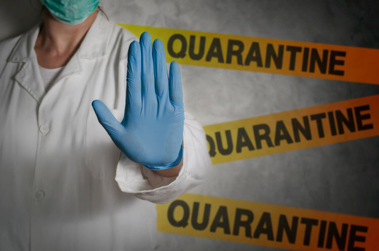 Don't Let Your SEO Marketing Plans be in Quarantine