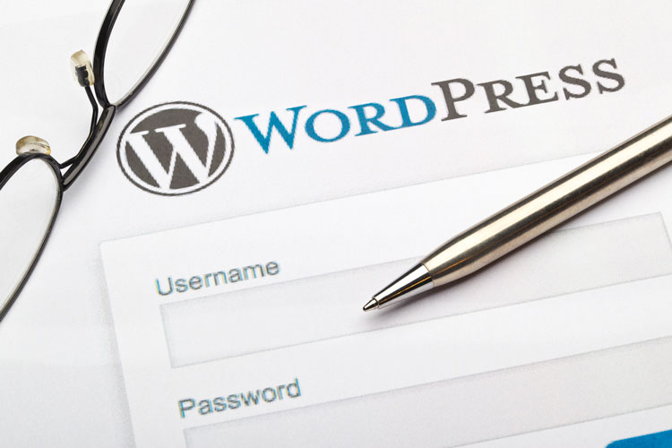 What Are the Benefits of a WordPress Website
