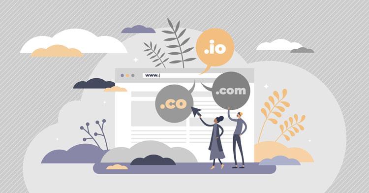 website domain